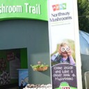 New Feature Big Hit At Balmoral – Growing an Interest in Mushrooms